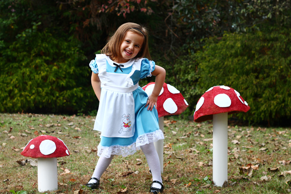 Alice in Wonderland costume with family Alice in Wonderland costumes
