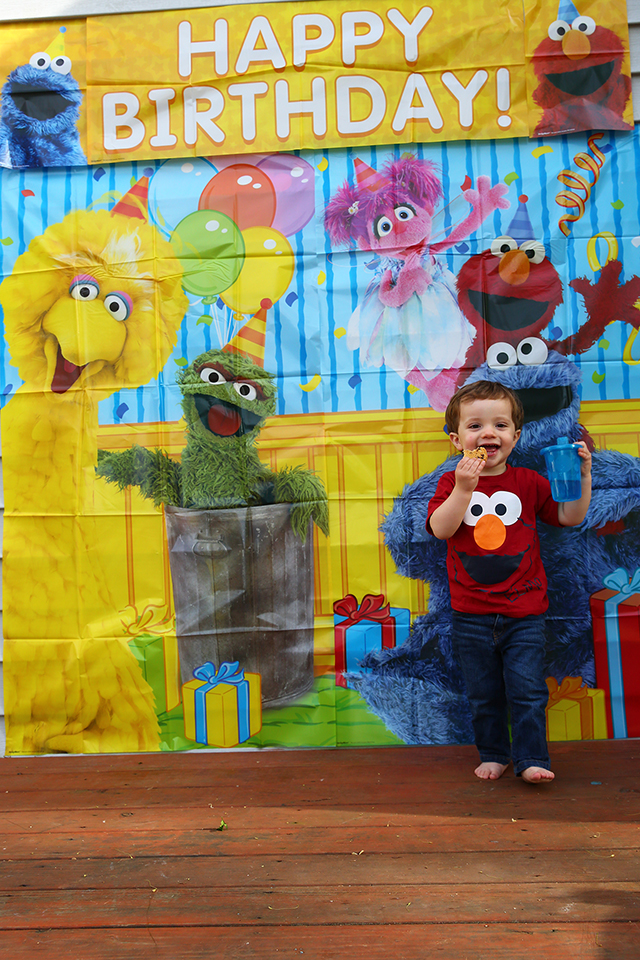 A Perfect Sesame Street Birthday Party For Two Year Old