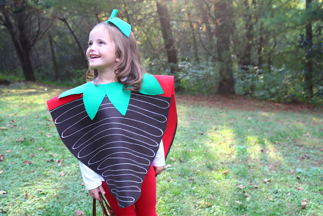Edible Arrangements Chocolate Covered Strawberry Costume