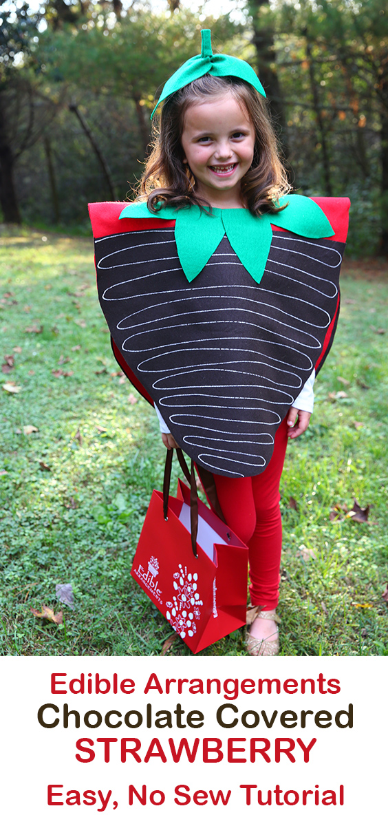 Edible Arrangements Chocolate Covered Strawberry Costume DIY No Sew Tutorial on The Mom Creative