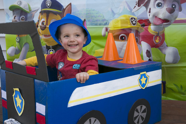 The Best Paw Patrol Birthday Party