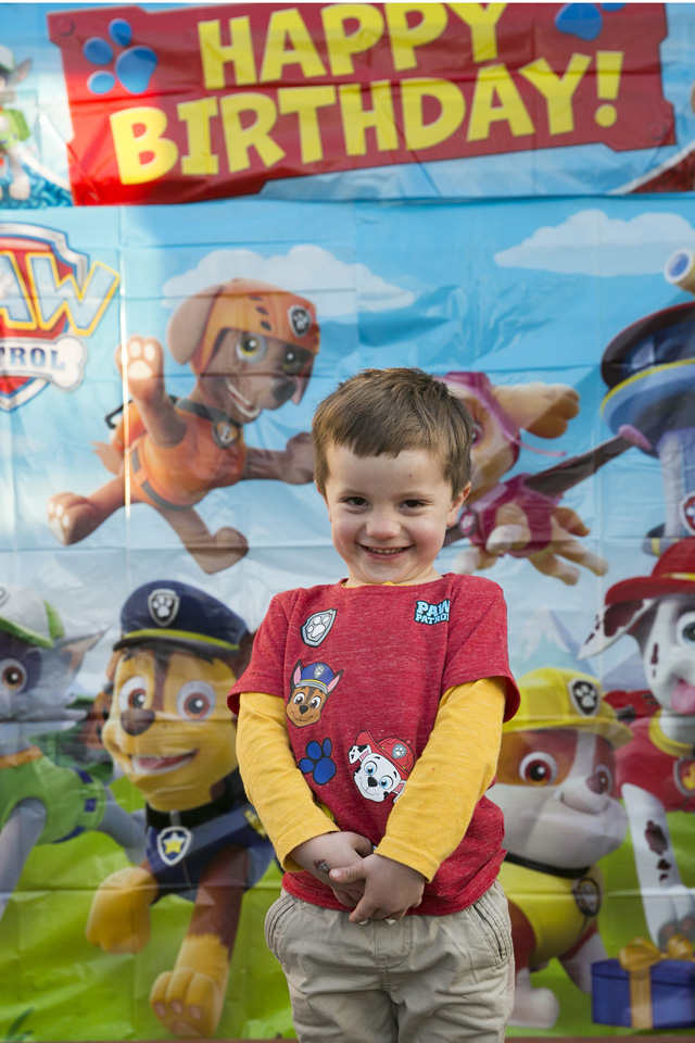 The Best Paw Patrol Party: Paw Patrol Scene Setter