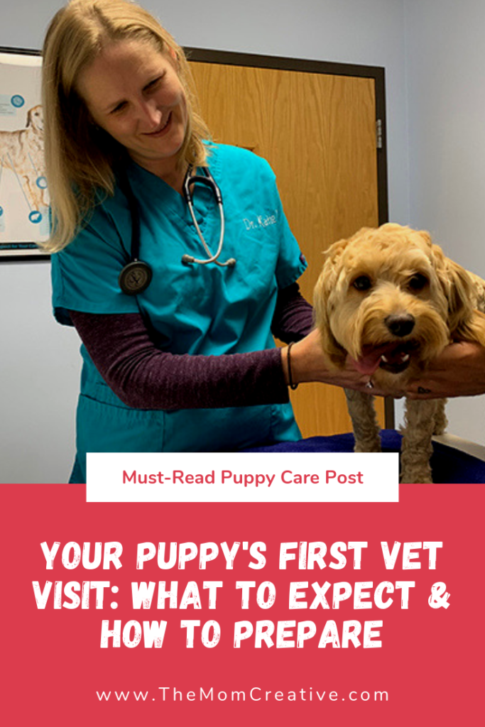 Your Puppy's First Vet Visit: What to Expect & How to Prepare